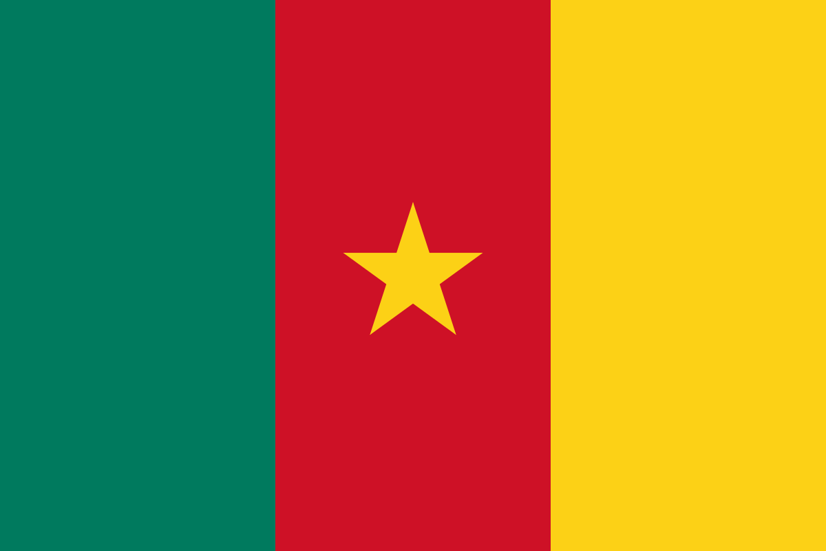 Attention Cameroon : here is what you need to know while choosing payment modes across Africa