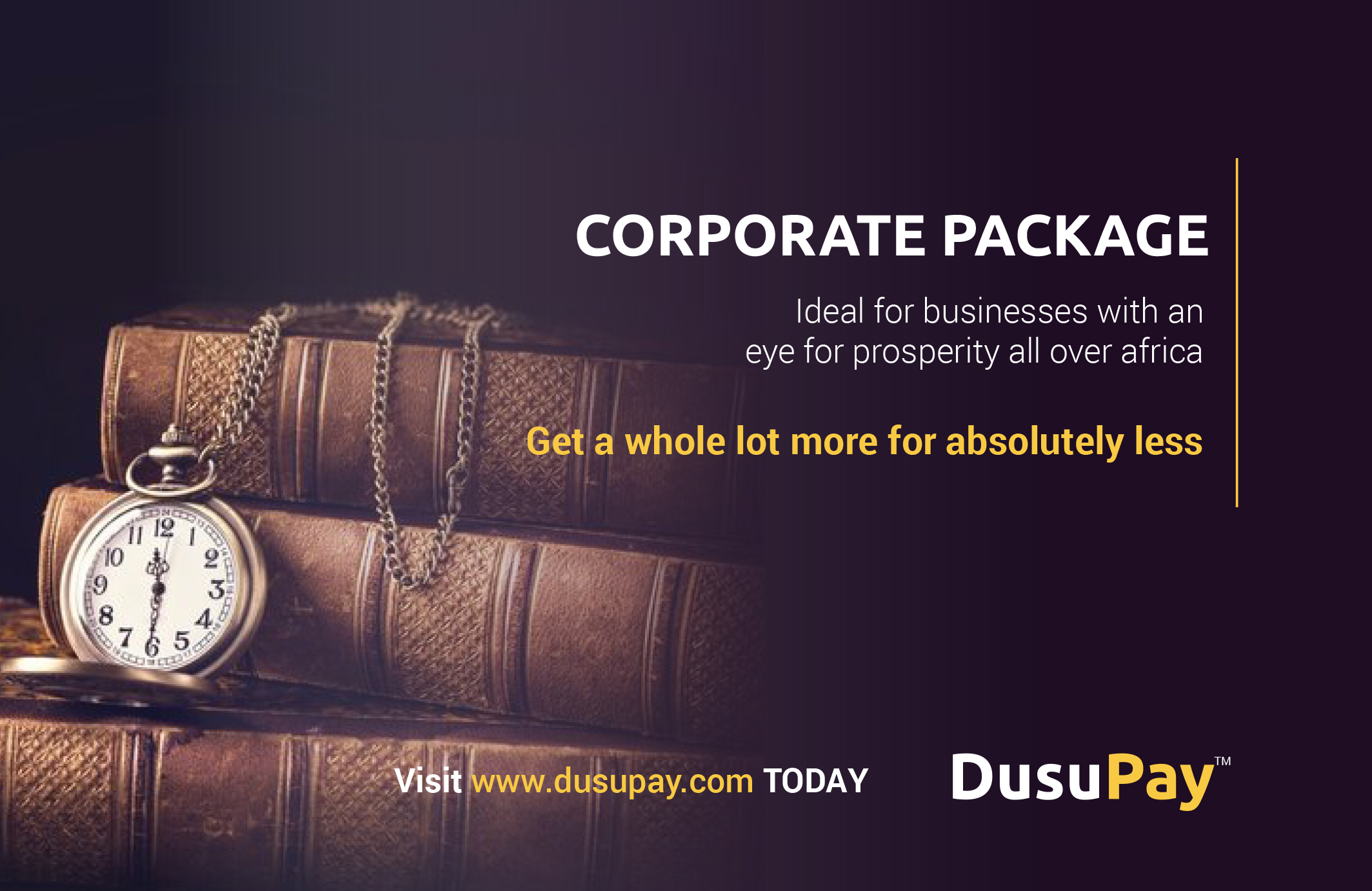 The Corporate package – ideal businesses with a will to dominate Africa
